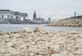 Niedrigwasser – das Bett des Rheines