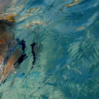 underwater05