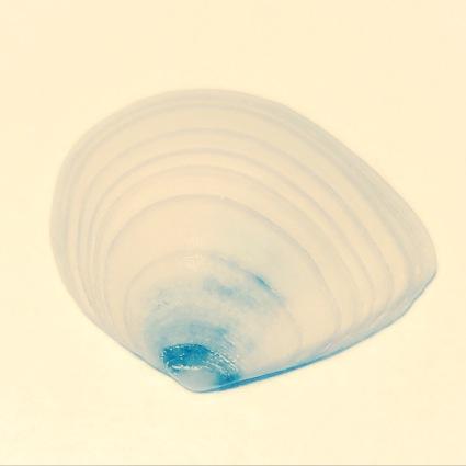 img_0764-2