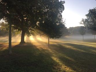 Wintermorgen im Vorgebirgspark